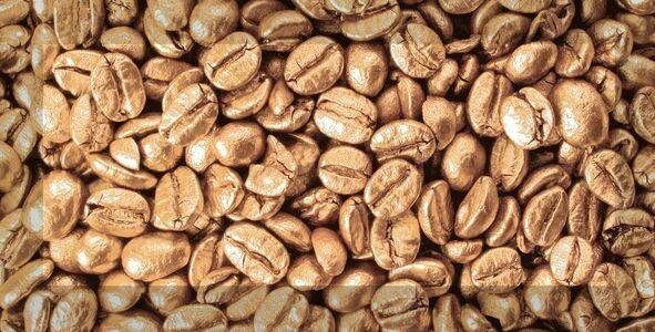 Absolut Keramika Monocolors Composicion Coffee Beans 02 декор